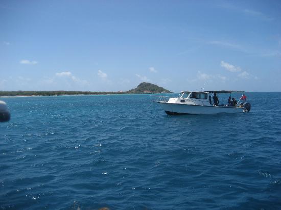 Blue Water Scuba
