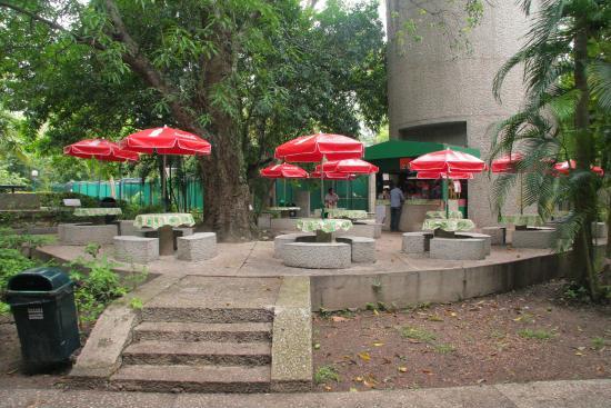Foto De Parque Museo La Venta Villahermosa: Foto De Parque Museo La Venta, Villahermosa: The Jaguar