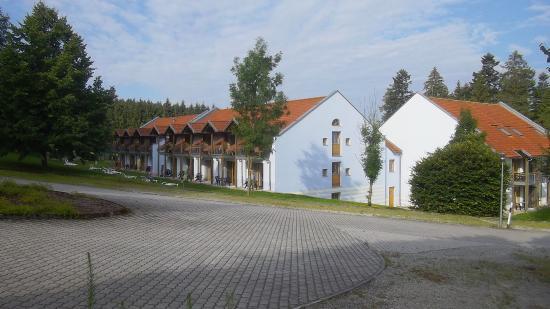 Sonnen, Alemania: Rückansicht vom Waldrand (oberer Block)