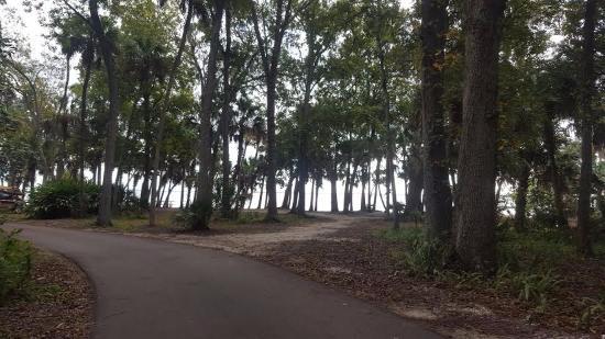 Manatee Hammock Campground: campground