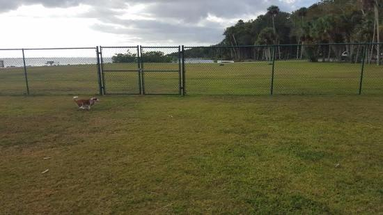 Manatee Hammock Campground: dog park