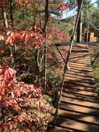 Long Creek, Carolina del Sur: Chattooga Ridge