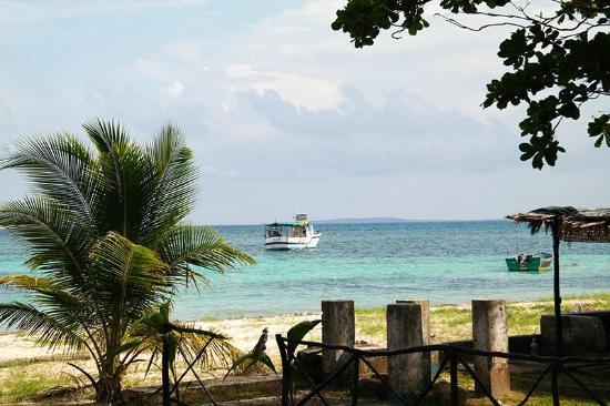 Big Fish Cafe and Guesthouse: Beach view