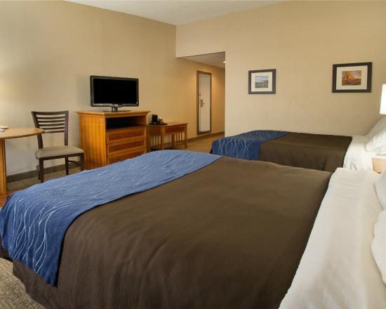 كومفرت إن كاريير سيركل: Room with Two Queen Beds