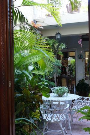 Casa Particular Reyes & Carolina : Essplatz im Innenhof