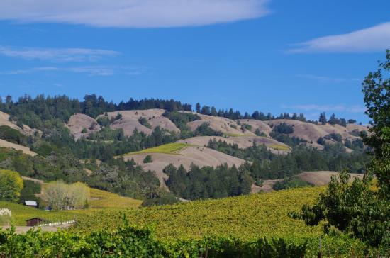 Philo, Калифорния: the northern hills of Anderson Valley