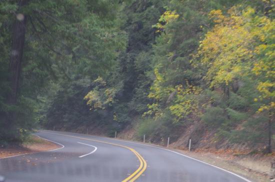 Philo, Калифорния: autumn foliage of Highway 128