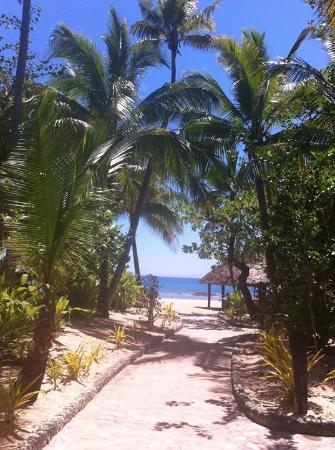 Tavarua Island Resort: Path from buries to beach