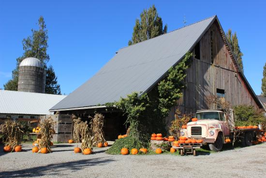 Gordon Skagit Farms