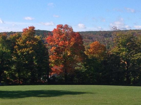 The Inn At Mount Pleasant Farm: Fall colours from John Brown room