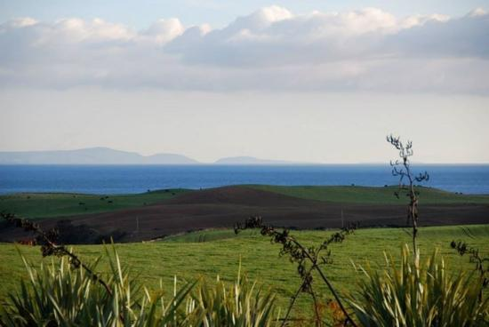 Drummore, UK: View from the bottom of the garden across the fields