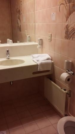 Fletcher Hotel-Restaurant De Zalm : bathroom