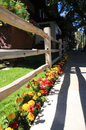 Mountain Chalet Aspen: Love all the flowers that adorn the grounds