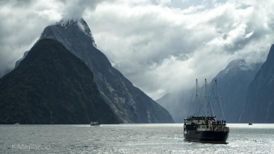 Alpine Adventures: Milford Sound Cruise