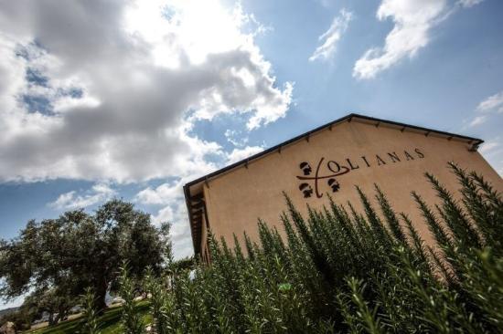 Джерджей, Италия: Esterno Cantina