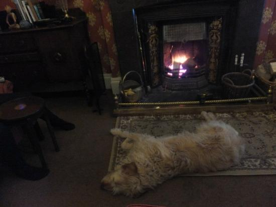 Sawrey Knotts: Relaxing after a day on the fells