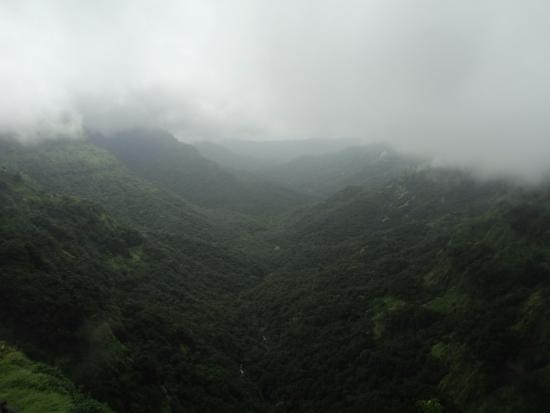 Ambavli, Indien: Green Valley with waterfalls..!!