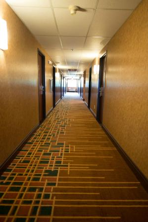 Phoenix Inn Suites South Salem: Hallway