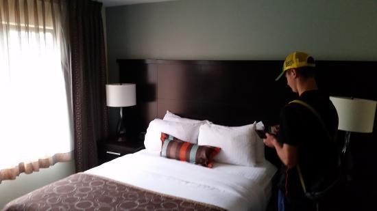 Staybridge Suites Hotel Tulsa - Woodland Hills : Queen Suite