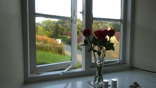 Kilburn, UK: View from the bedroom window (fresh flowers)