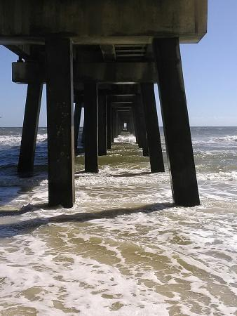 Sharks seen at gulf state pier picture of gulf state for Pier fishing gulf shores al