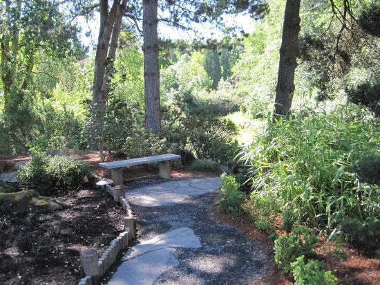 เกรชัม, ออริกอน: Garden bench and small bamboo
