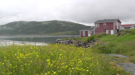 """Whaling Station Cabins: Cabin """"Steal Head"""""""