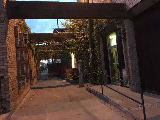 Grand Junction, CO: A quaint little alley with vines. Probably an entrance to a winery.