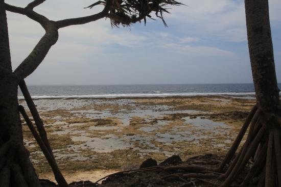 Waves on Bukura : la vue à marée basse