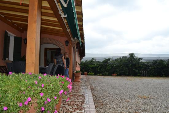 Agriturismo S. Anna: Varanda proximo ao restaurante