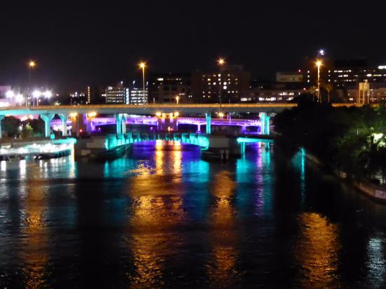 Hillsborough River : Bridges at night