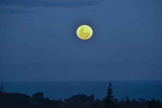 Manakau Lodge: Moonrise over the ocean