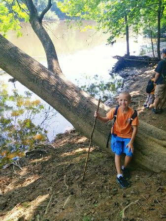 Lillington, NC: Raven Rock State Park hike.