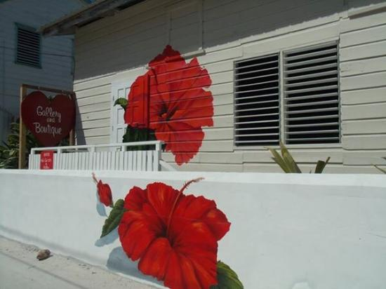 Caye Caulker, Belize: Red flower Gallery