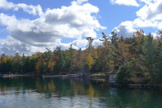 Thousand Islands: Beautiful foliage.