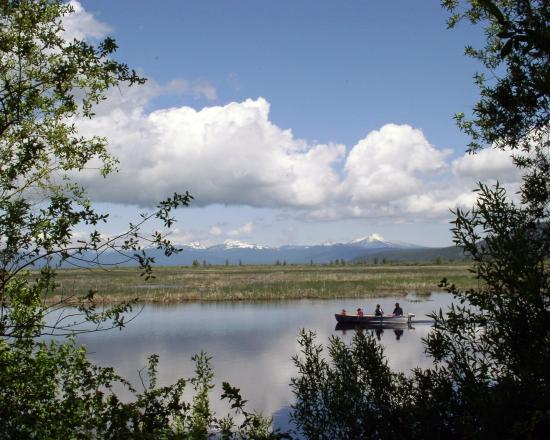 Wood River Wetland Klamath Falls 2019 What To Know