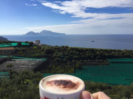 Hotel Villa Pina: Enjoying a café on the terrace