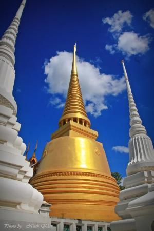 Ayutthaya Province, Thailand: Golden stupa @ Wat Senassanaram - Ayutthaya