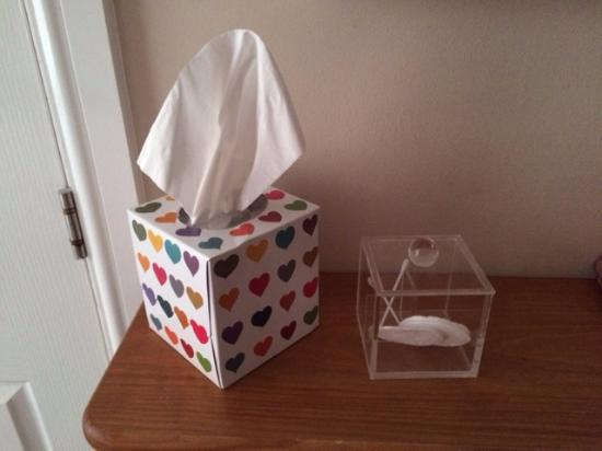 Cartref Guest House: Tissues, cotton wool and earbuds