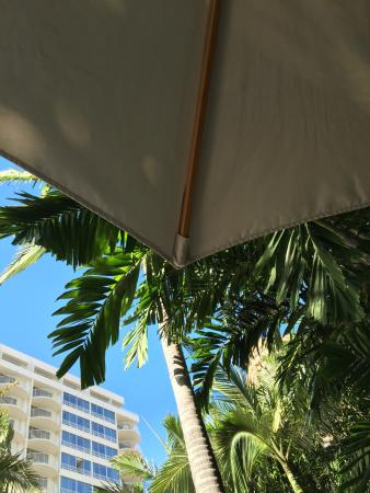 Cool boutique hotel in Honolulu