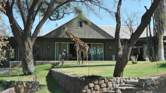 Epako Game Lodge: hotel