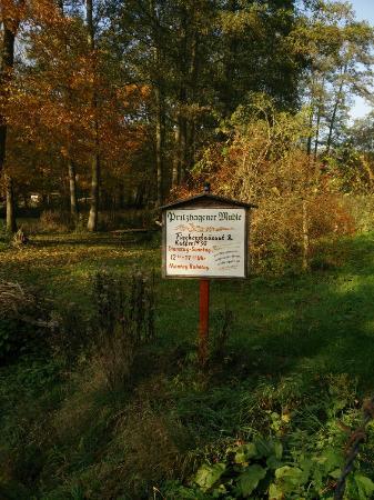Buckow, ألمانيا: Fisch hat viel Vitamin A