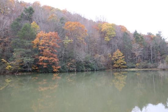 Beagle Ridge Herb Farm: Pond (requires a walk)