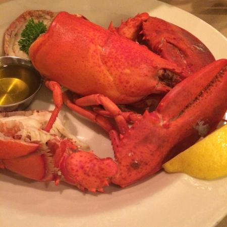 Little Compton, RI: Lobster