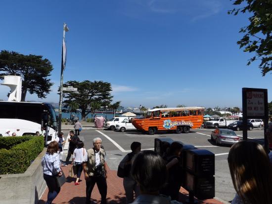 Ride The Ducks of San Francisco: divertido