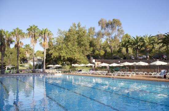 Club Hotel Tropicana Mallorca Reviews