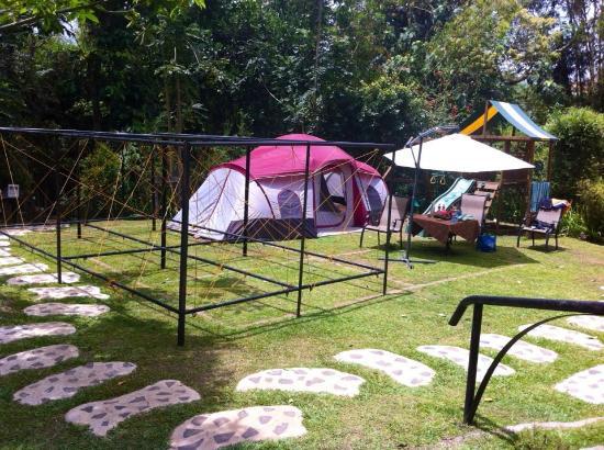 Gabriella at Nurture Wellness Village gl&ing area & glamping area - Picture of Gabriella at Nurture Wellness Village ...