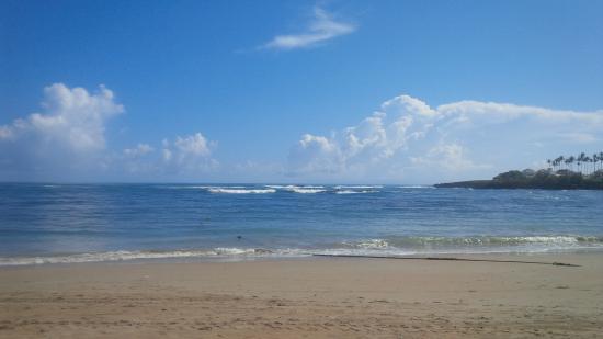Cofresi Palm Beach Spa Resort Fun At The