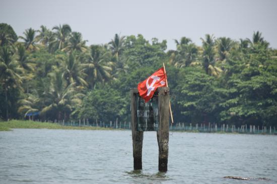 Kerala Backwaters: Vembanad lake