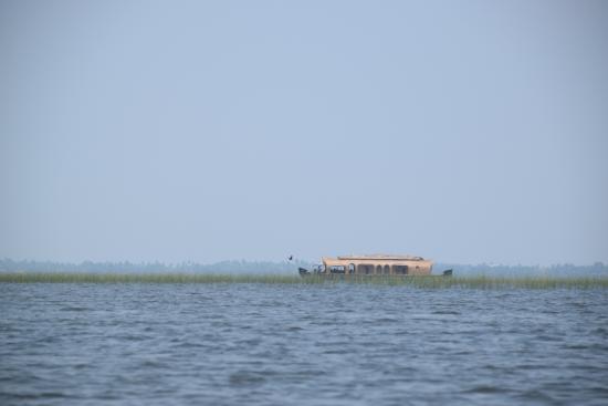 Kerala Backwaters: House boats cruising through Vembanad lake